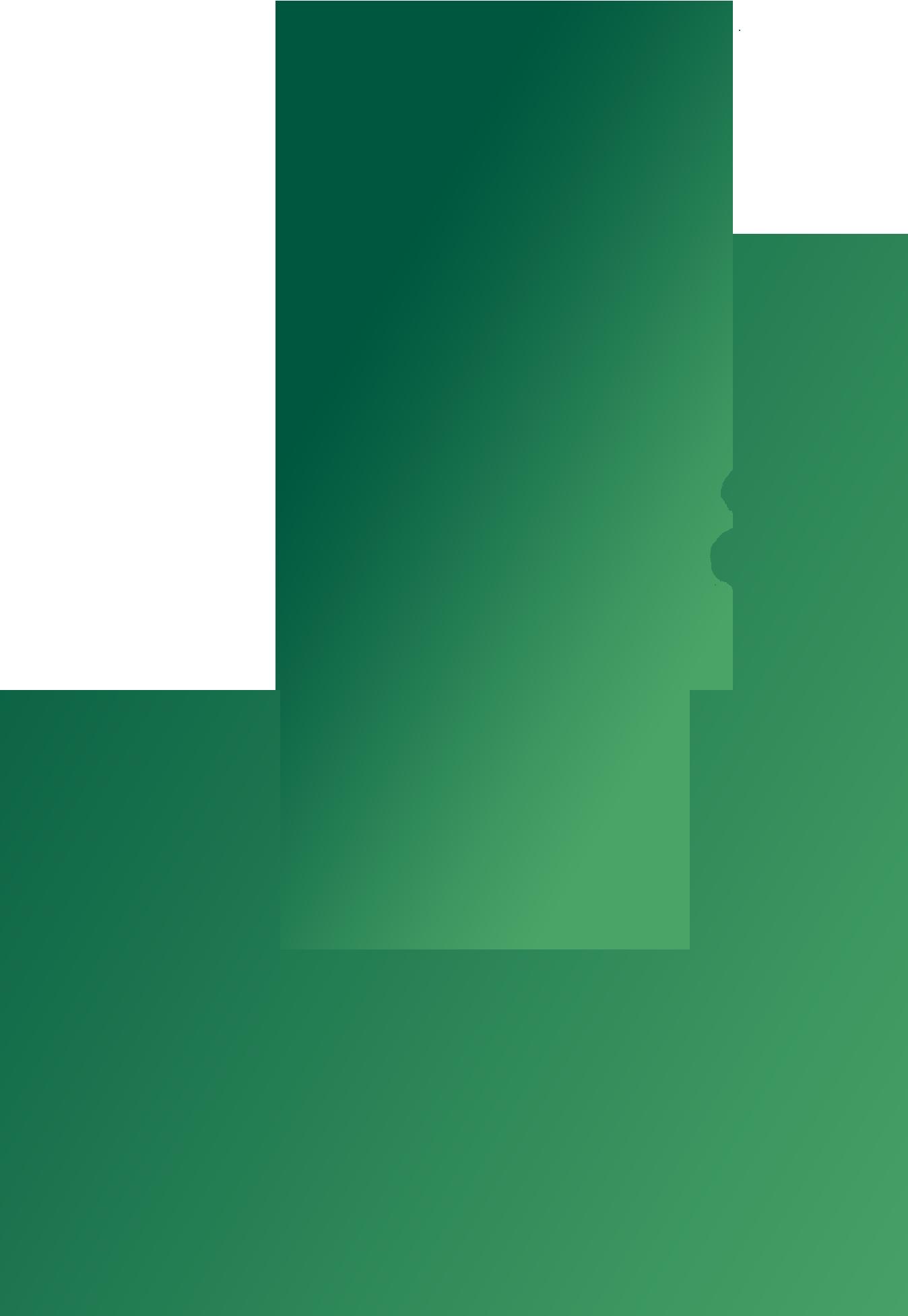LeHuppé_ROGÉ_ILLUSTRATION_arbres-01