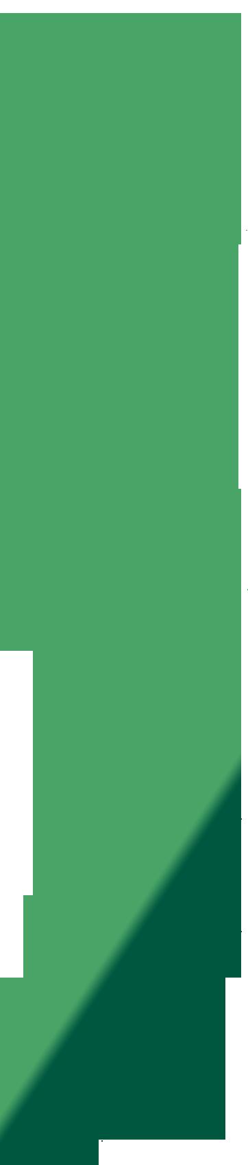 LeHuppé_ROGÉ_ILLUSTRATION_arbres-01-Well