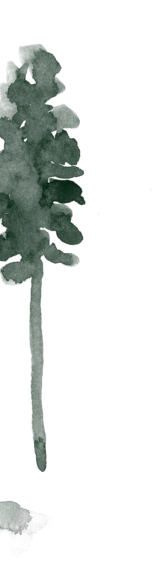 arbre-left